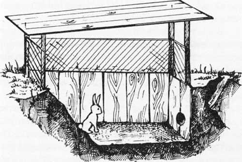 Схема ямы для кролика